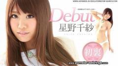 Japanese Porn Star Chisa Hoshino